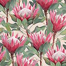 Painted King Proteas on Cream  by micklyn