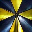 Black & Gold Umbrella by hallucingenic