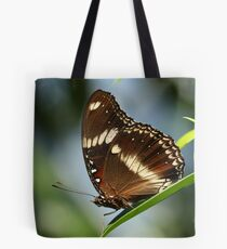 Common Eggfly Butterfly Tote Bag