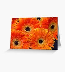 Gerbera Bouquet Greeting Card