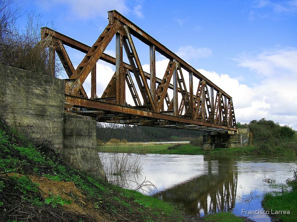 Abandoned railway bridge. by Francisco Larrea