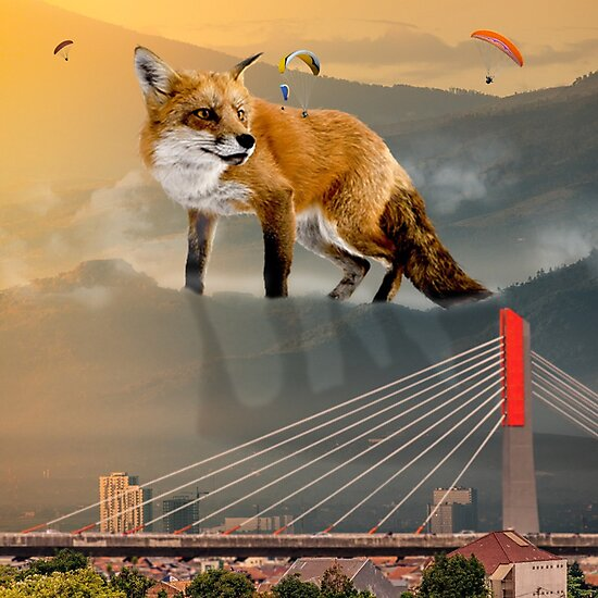 giant fox photographic prints by likescurving redbubble
