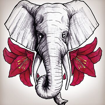 Elephant Blossom by TimMcDaunting