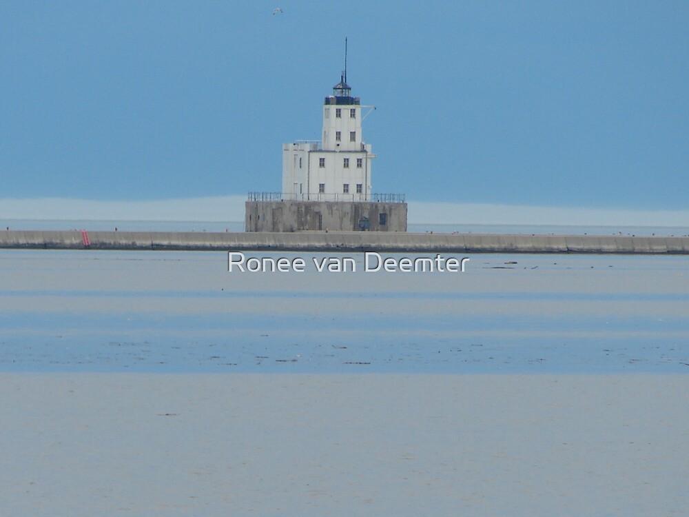 Lighthouse in Milwaukee by Ronee van Deemter