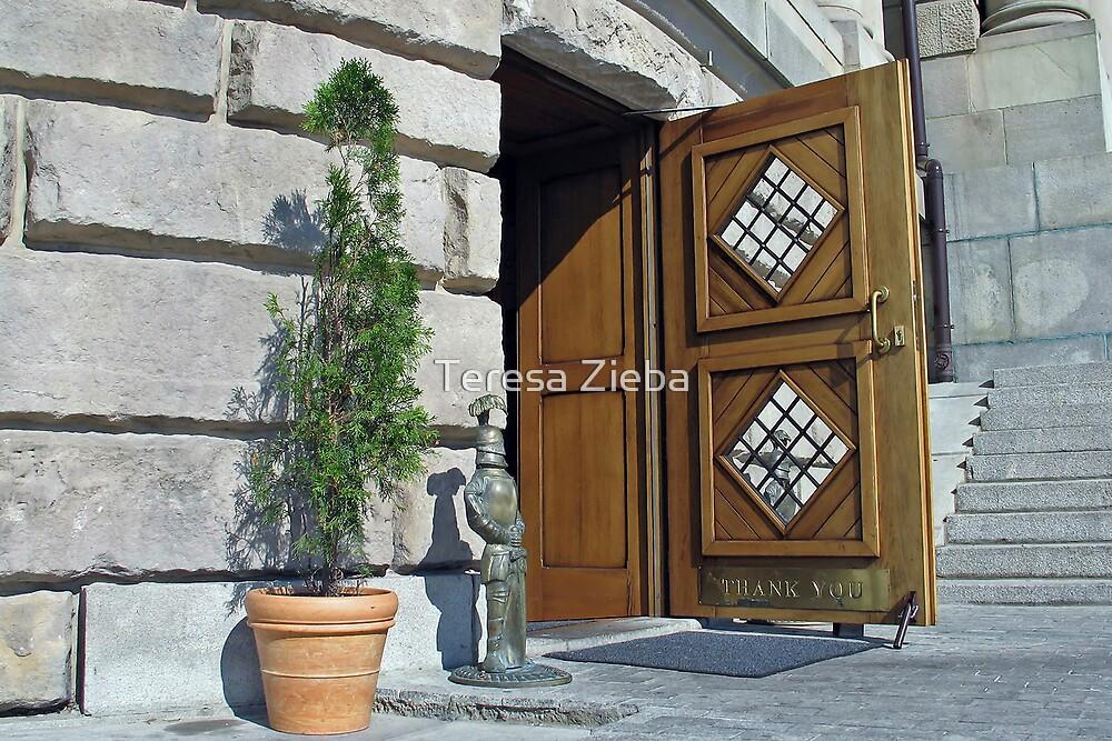 Thank You Doors by Teresa Zieba