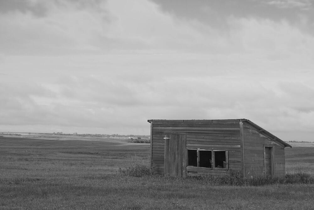 Chicken Coop in Black and White by DakotaDawn