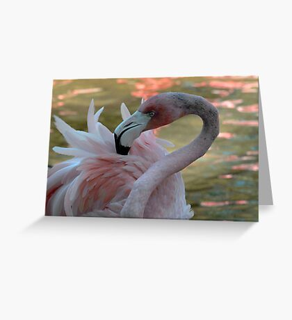 Portrait in Pink Greeting Card