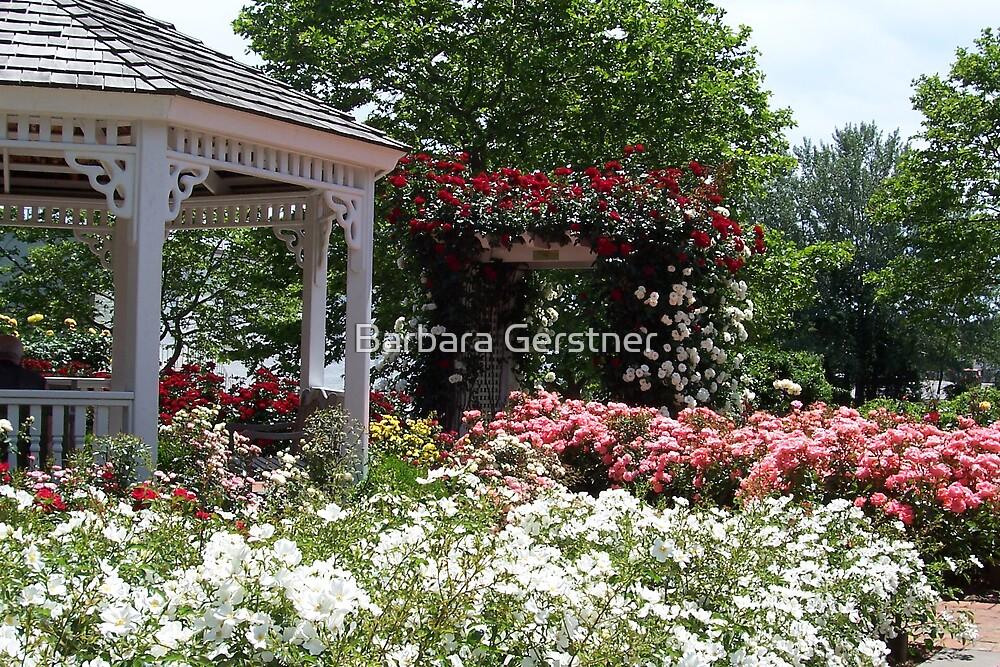 In full bloom by Barbara Gerstner