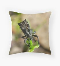 If Mad Max made insects Throw Pillow