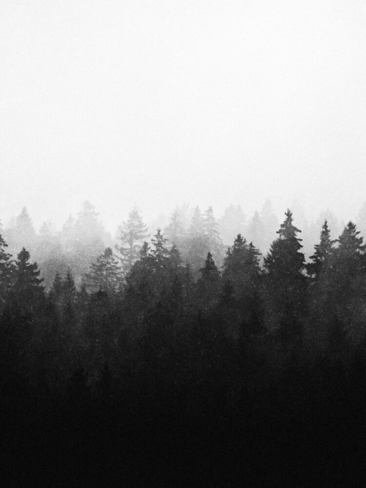 A Wilderness Somewhere by tekay