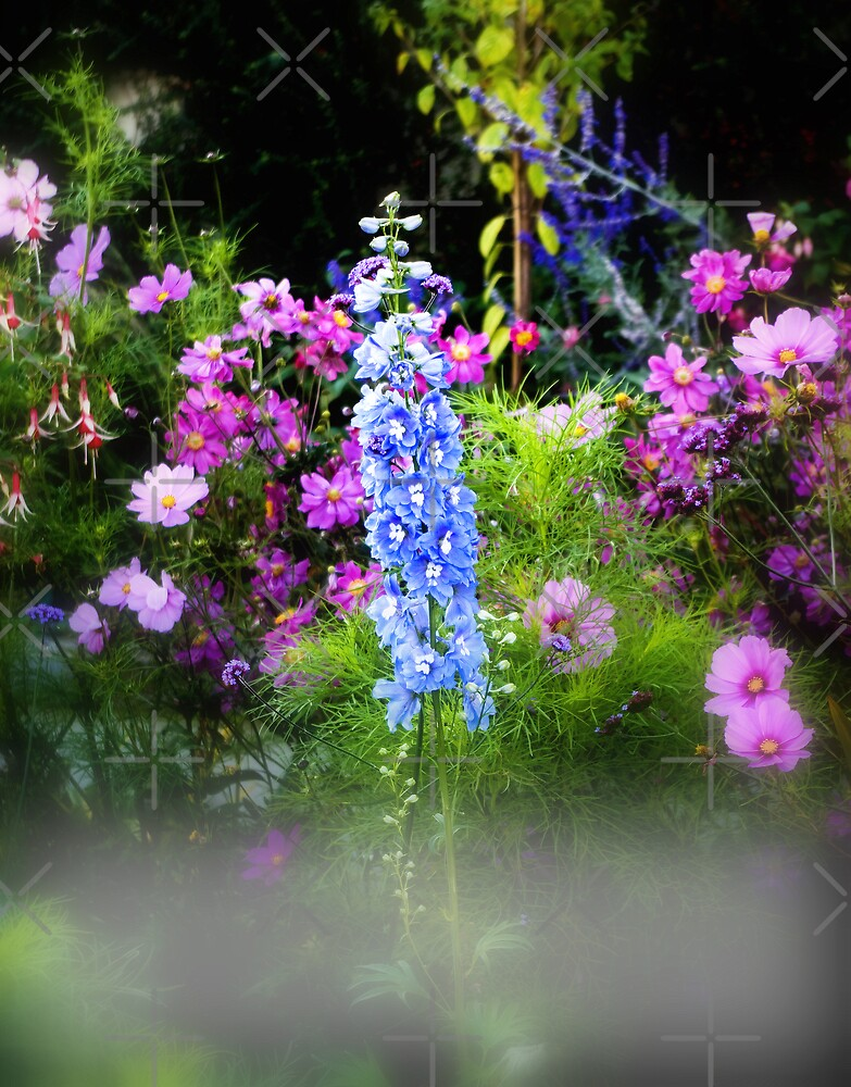 English Country Garden by Catherine Hamilton-Veal  ©
