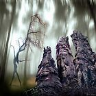 Faces Of The Woods by Igor Zenin