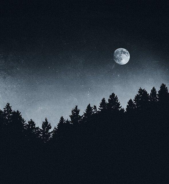 Under Moonlight by Tordis Kayma