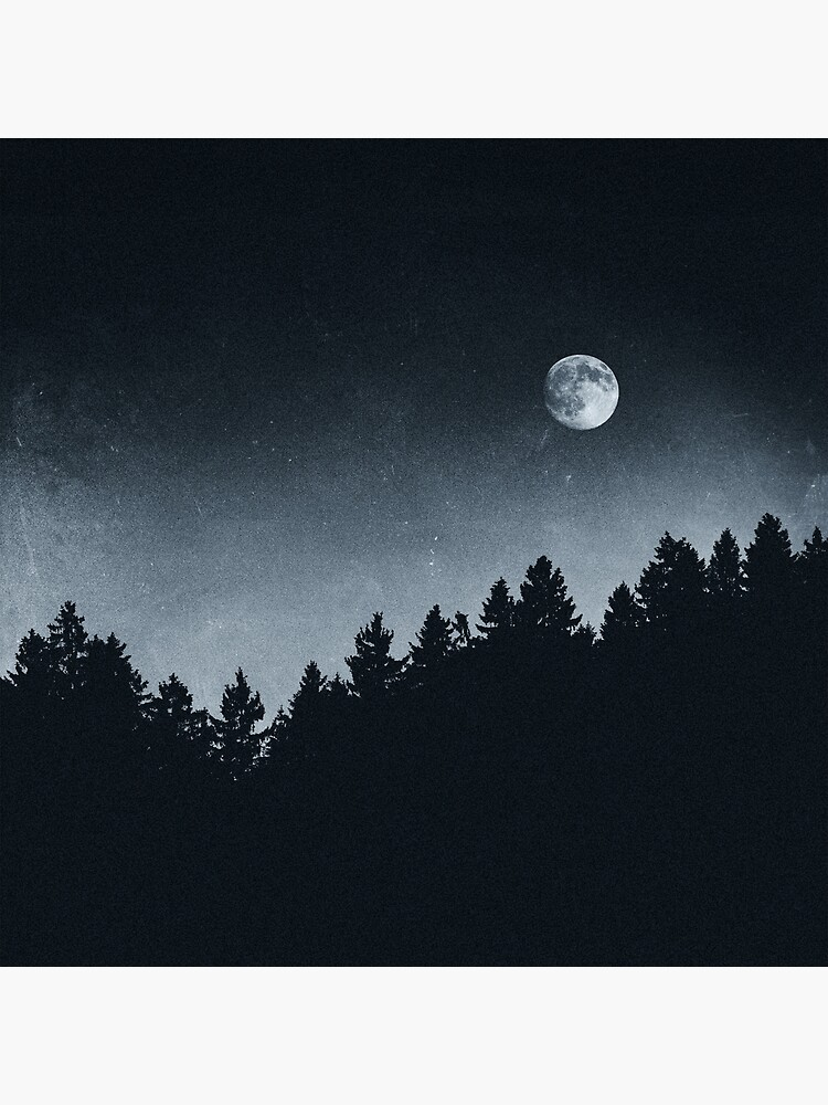 Under Moonlight by tekay