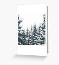 In Winter Greeting Card