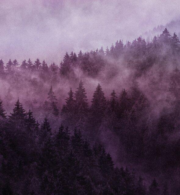 Excuse Me, I'm Lost // Laid Back Edit by Tordis Kayma