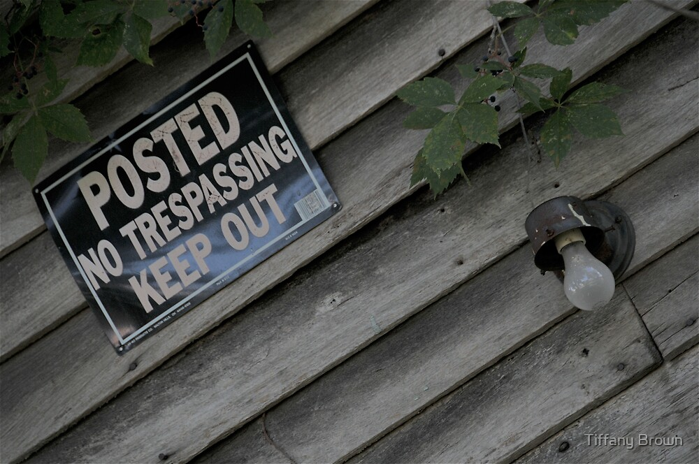 No Trespassing by Tiffany Brown