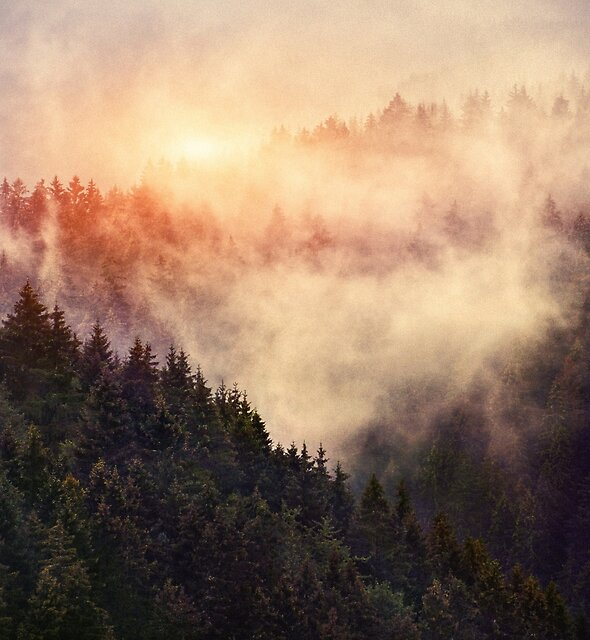 In My Other World by Tordis Kayma