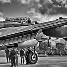 Just Jane. by Martin E. Morris