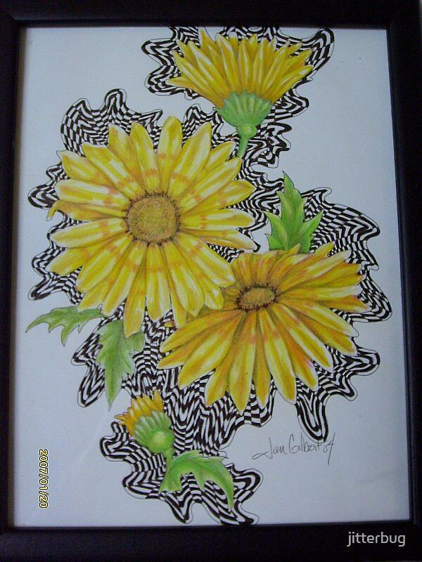 daisy by jitterbug