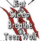 Teen Wolf Calender by jordams124