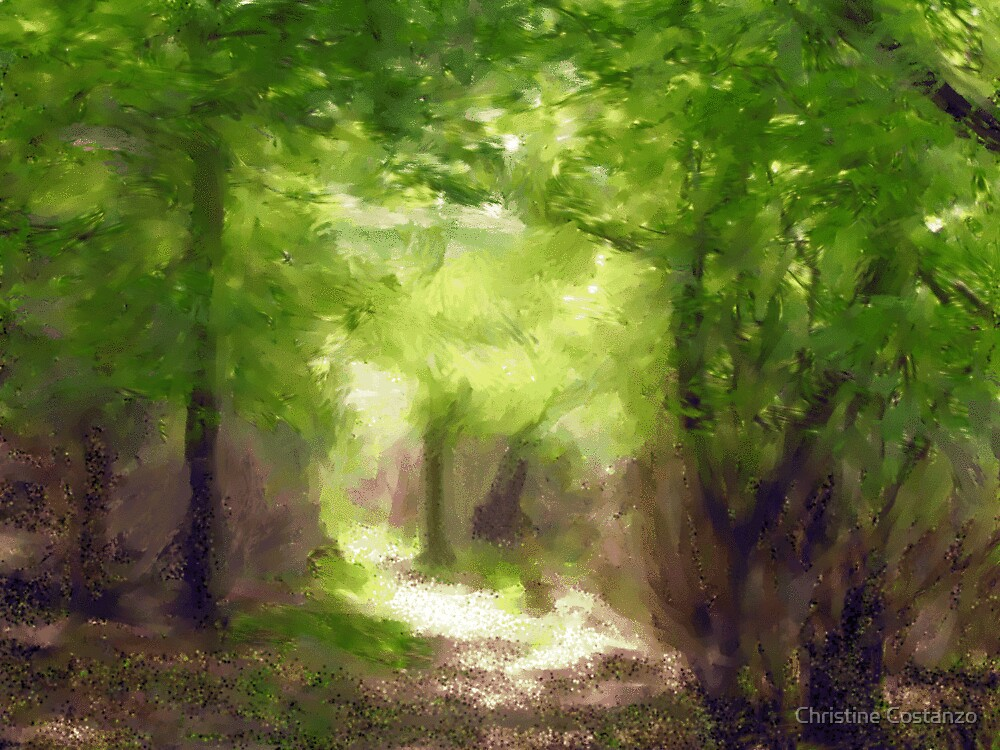 Down a Forest Path by Christine Costanzo