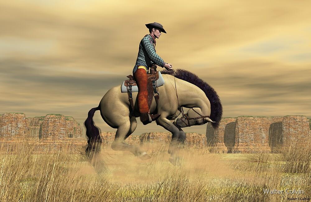 Bronco by Walter Colvin