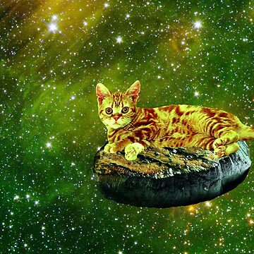 Cat on a Steak by mikeymadness