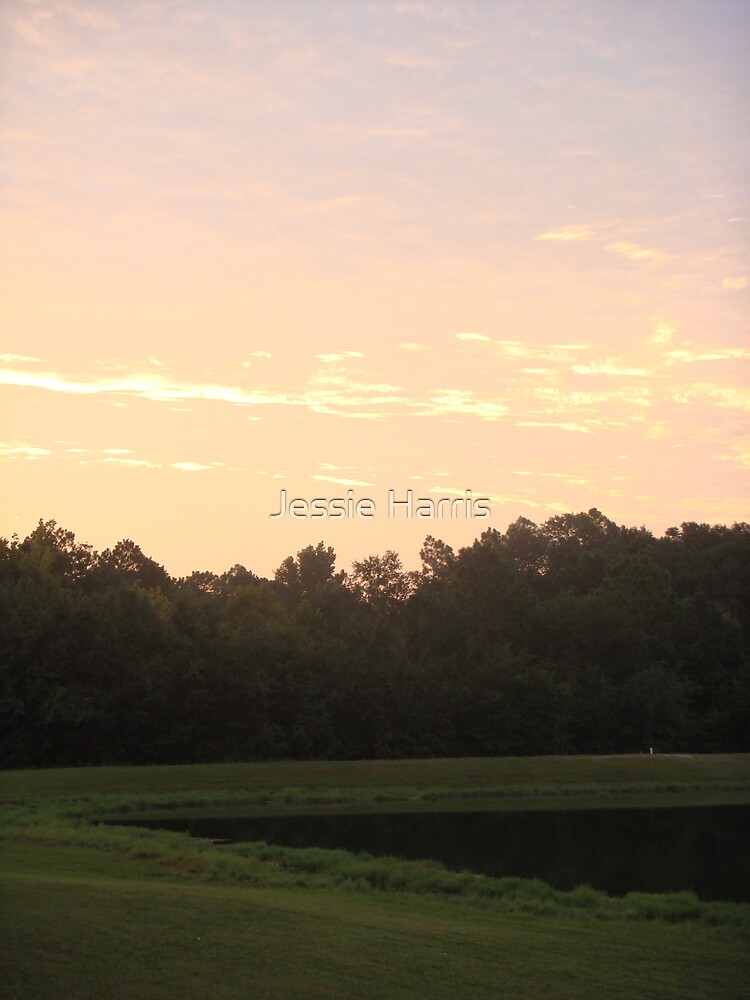 Morning Light by Jessie Harris