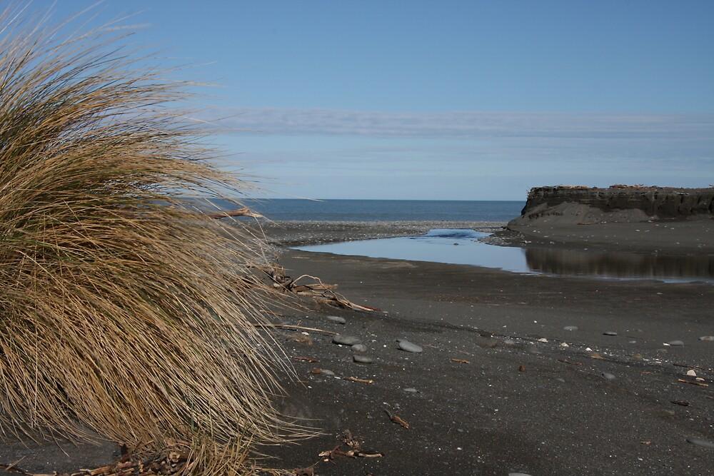 New Zealand - West Coast by Peter Husband