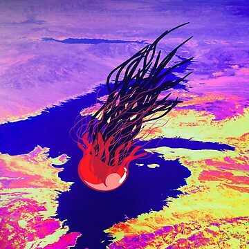 Jellyfish Lake by jickay