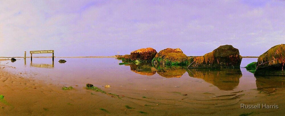 The Coorong is Dieing we must act, not just watch! by Russell Harris