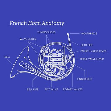 French Horn Blue Print by mpeek