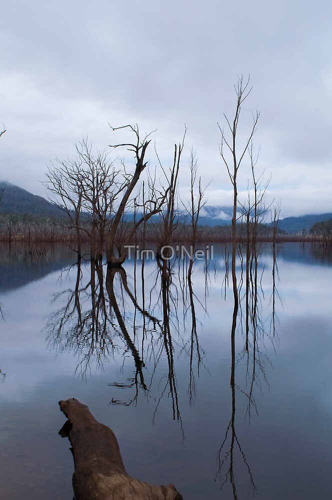 Lake Rowallan by Tim O'Neil