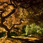 Shadows of Eden I by failingjune