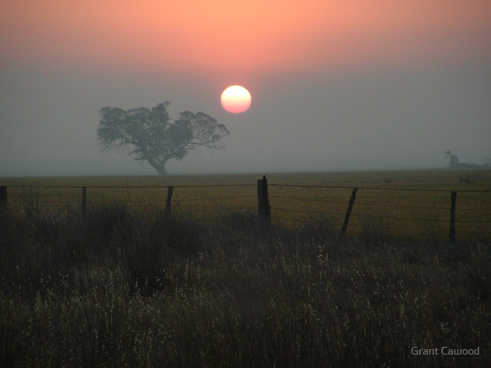 Smoky Sun by Grant Cawood