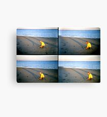 lomo fun in the afternoon sun Canvas Print