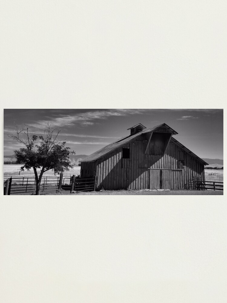 Alternate view of A Black & White World Photographic Print