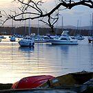 Tinnies Ashore - Valentine NSW by Bev Woodman