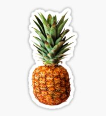 Pineapple Vector Sticker