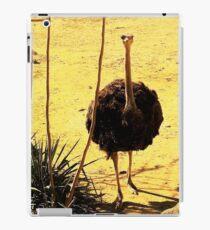 Ostrich iPad Case/Skin