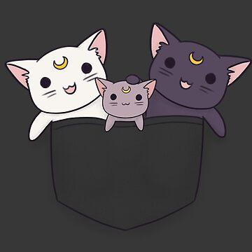 Familia de Pocket Lunar de LiRoVi