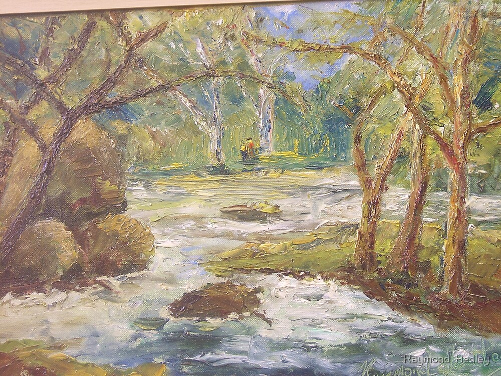 River up from Skelwith Bridge Lake District Cumbria by Raymond  Hedley
