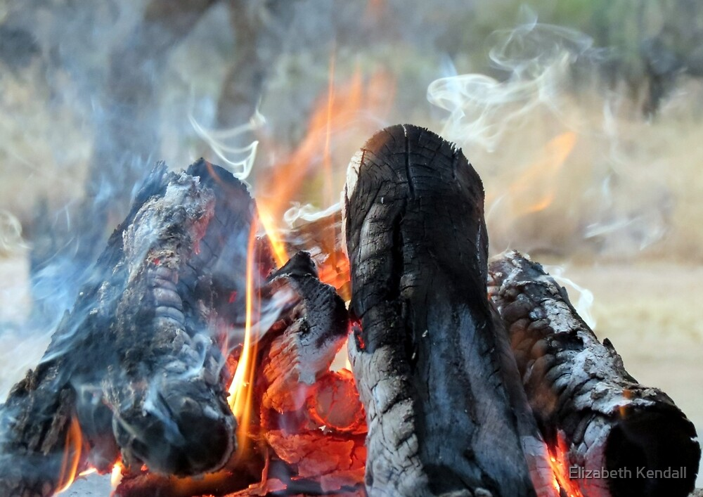 It's in the smoke by Elizabeth Kendall