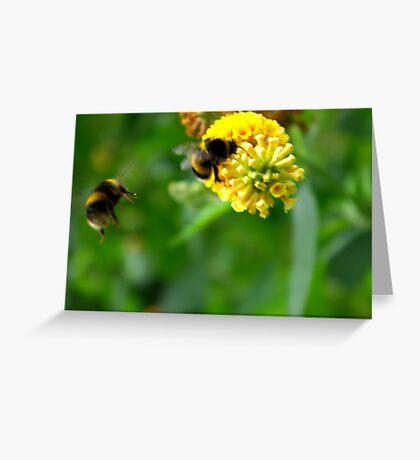 Bee #4 Greeting Card