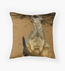 Theres just not enough hours in the day Throw Pillow