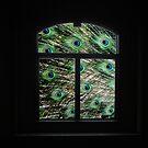 Peacock in a Window by Wayne King
