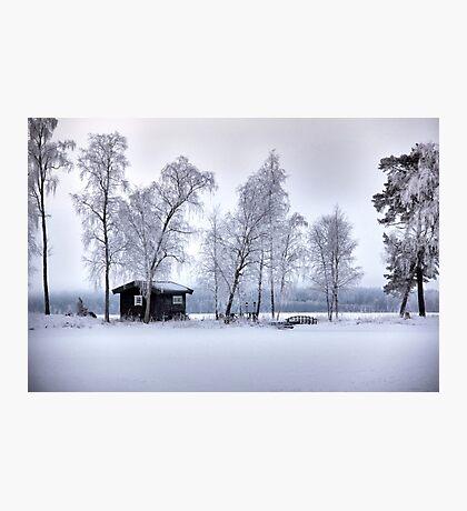 Winter's dress Photographic Print