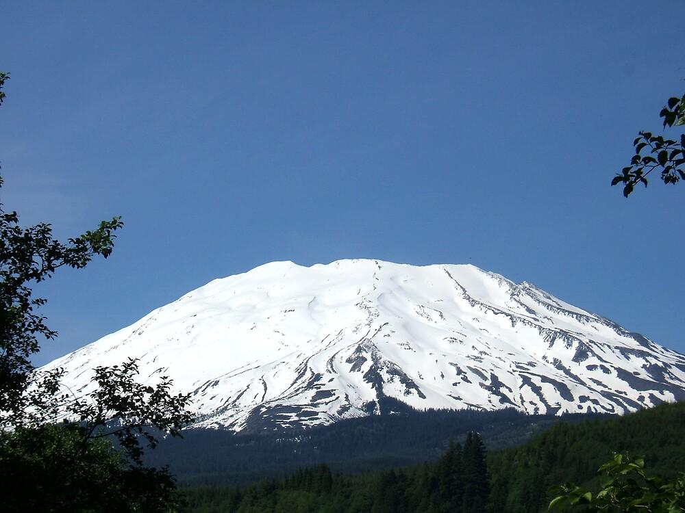 Mount Saint Helen by Mindy Miller