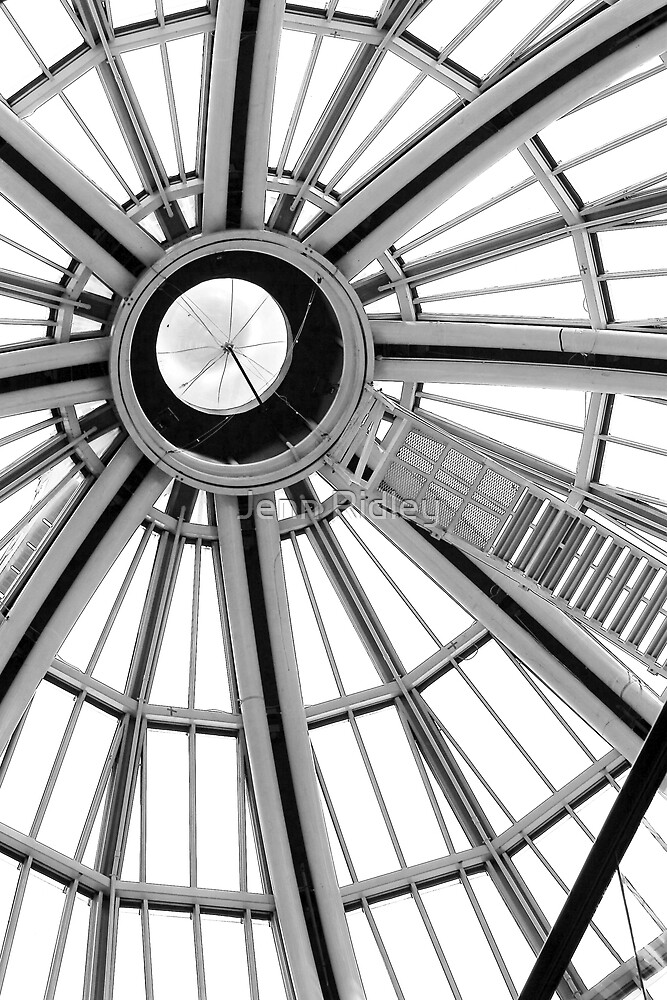 Looking Up by Jenn Ridley